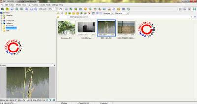 cara mudah memberi watermark pada gambar dalam jumlah banyak