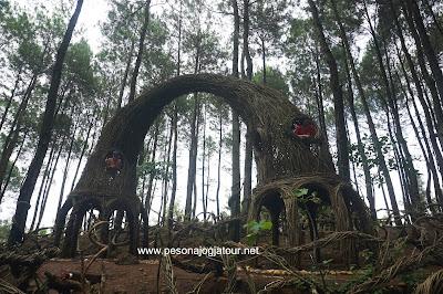 spot Gapura pinus pengger