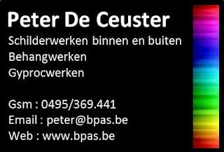 www.bpas.be