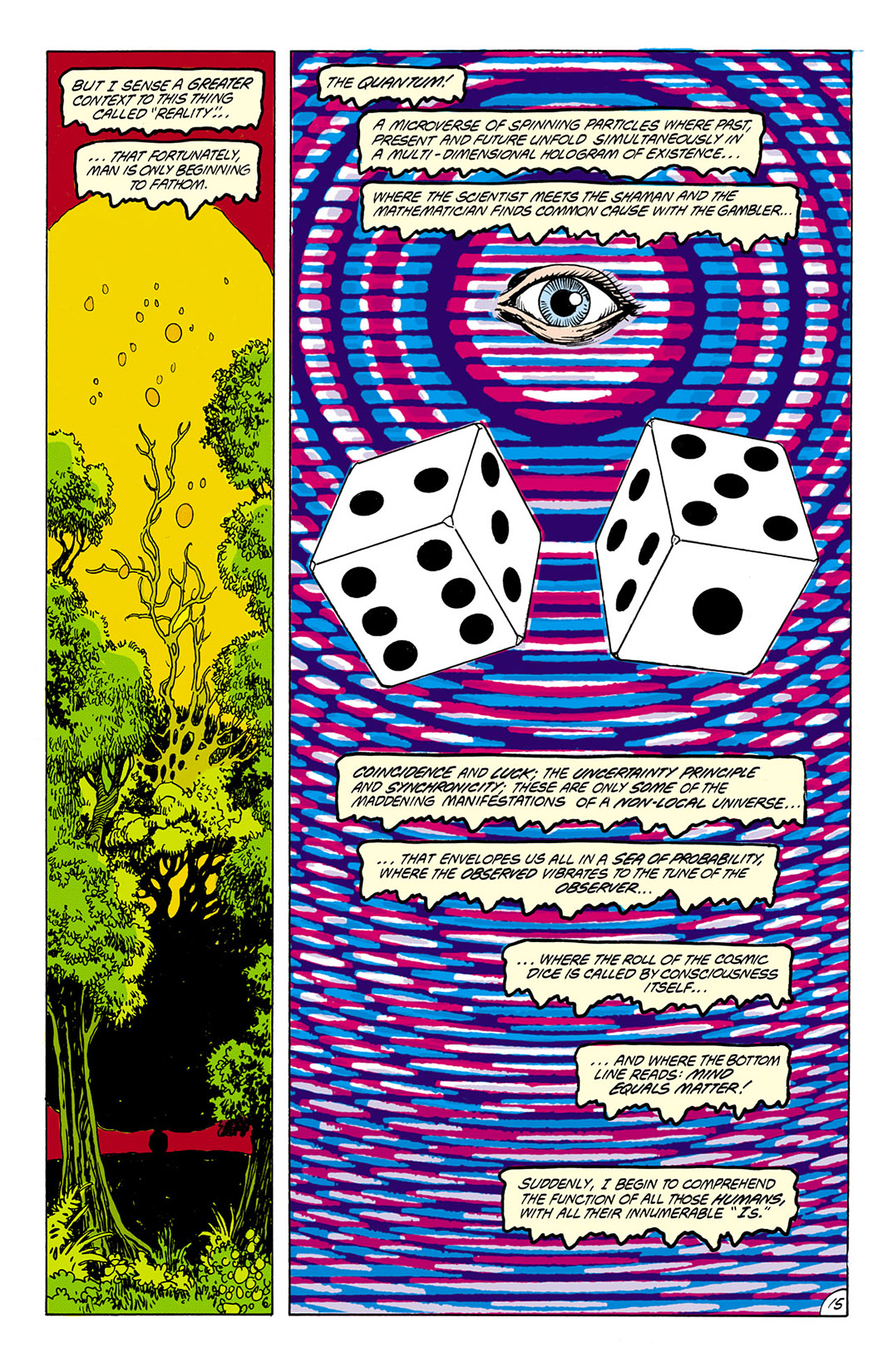 Swamp Thing (1982) Issue #75 #83 - English 15