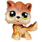 Littlest Pet Shop Pet Pairs Wolf (#2141) Pet