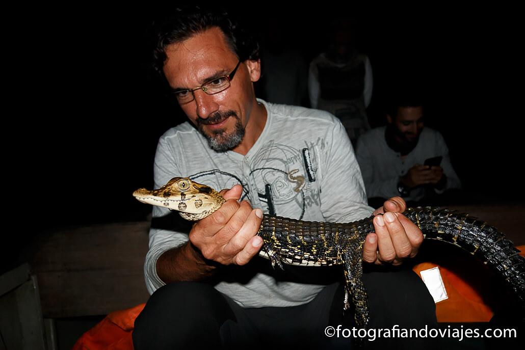 Animales nocturnos en la selva amazónica