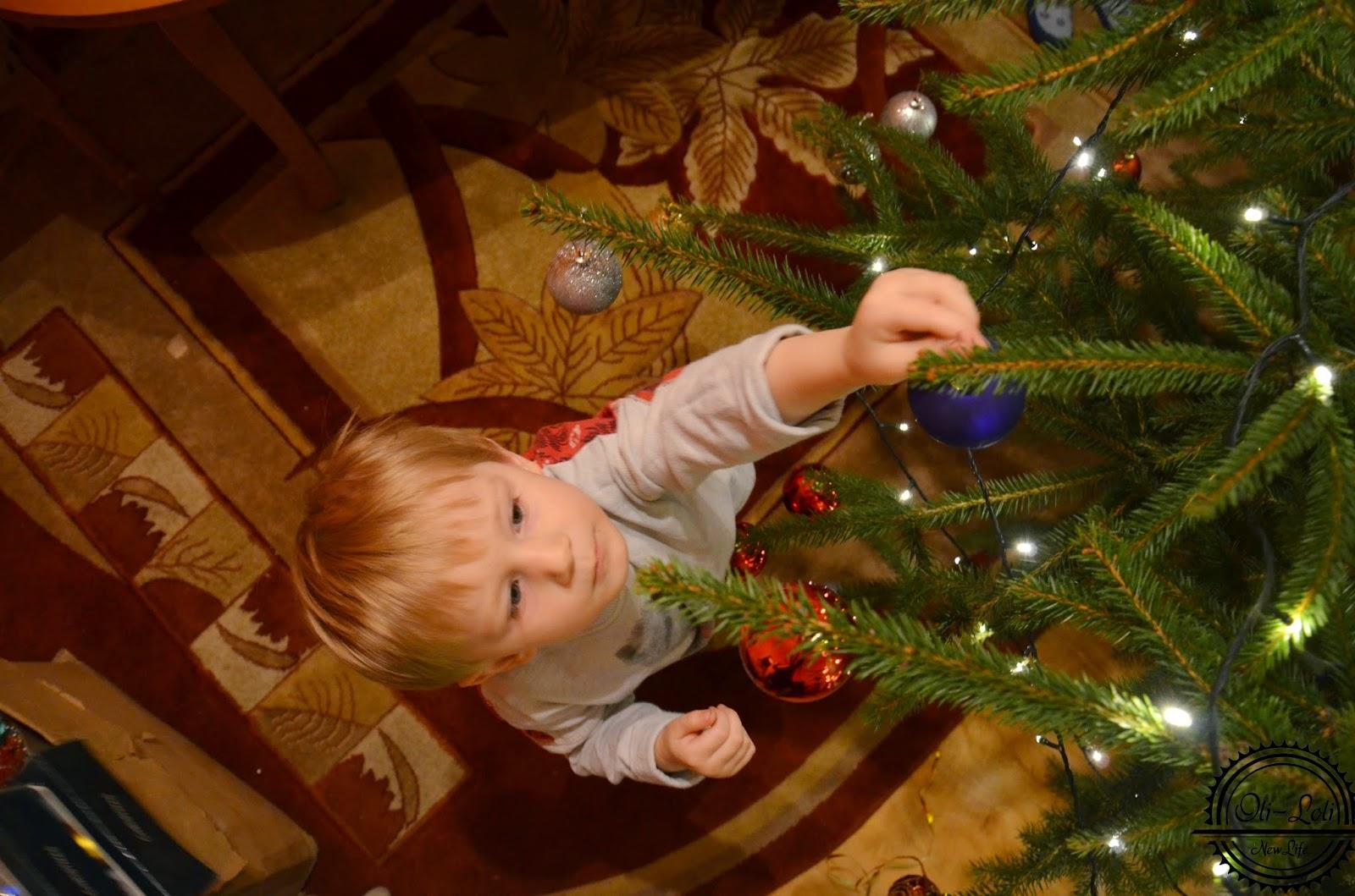 Świąteczny foto-skrót