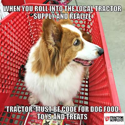 Devoted Dog Food Feeding Guide