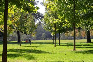Donde está el Parque Intercomunal de la Reina de Santiago de Chile 8