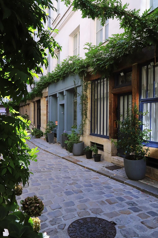 Pavés, immeubles et végétation