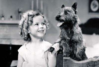 Hollywood Dog Trainer Carl Spitz