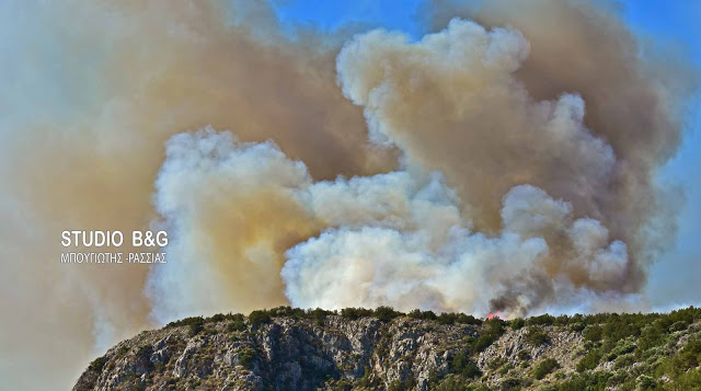 Μεγάλη πυρκαγιά σε δύσβατη περιοχή στον Ταΰγετο