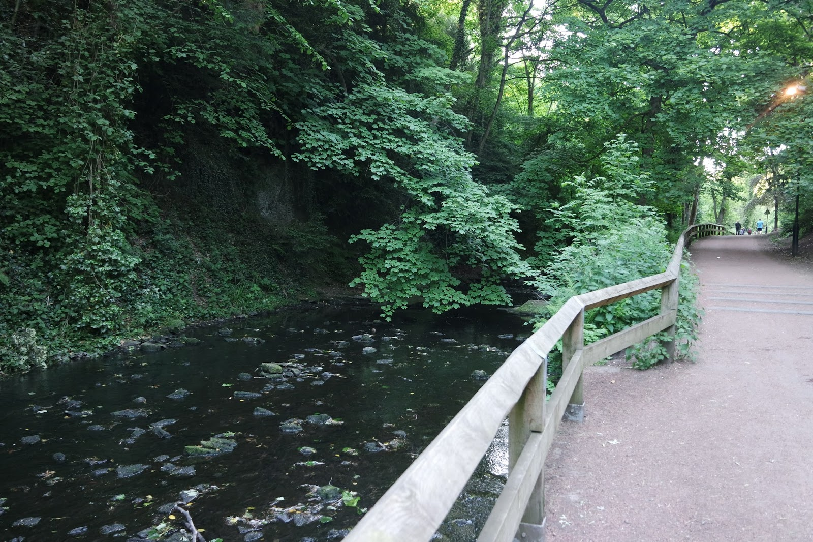 A walk in Jesmond Dene