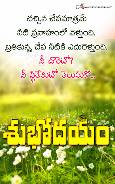 telugu good morning, telugu subhodayam best latest online good morning messages