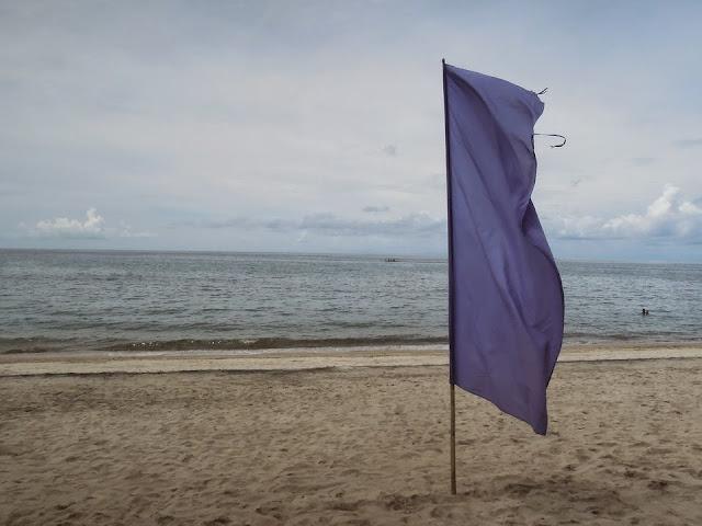 Flaglets at Laiya Coco Grove Beach Resort