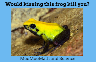 Would touching poisonous frog kill you?