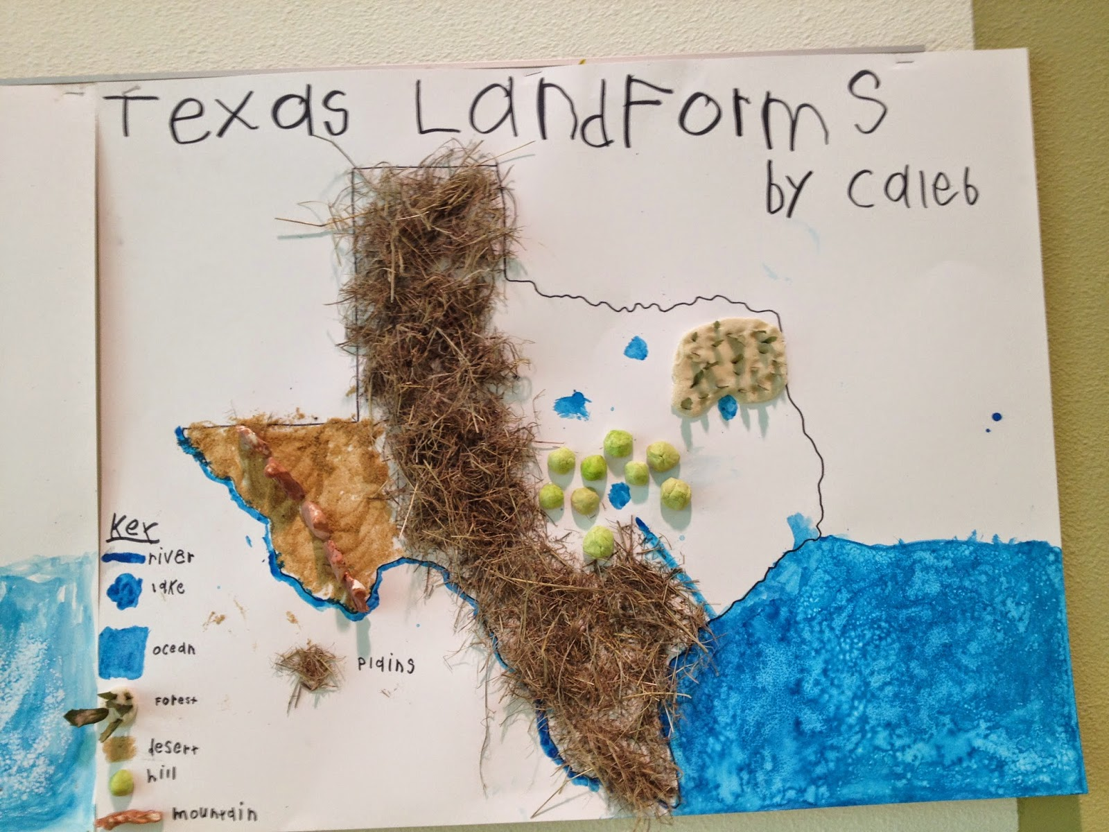 3D Landforms Map by Teaching in Blue Jeans