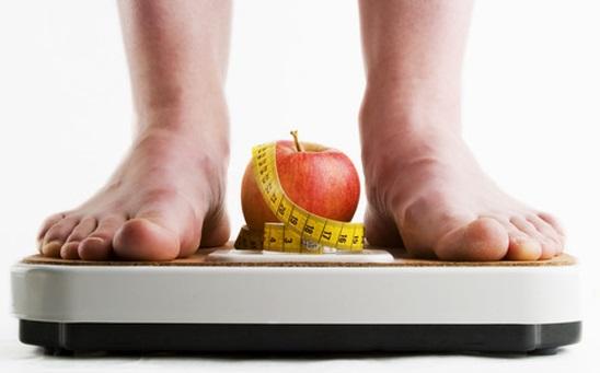 proses lemak di dalam tubuh