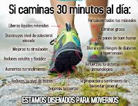 https://steviaven.blogspot.com/2017/10/beneficios-caminata-matutina-30-minutos-todos-dias.html