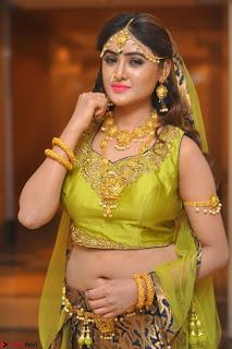 Sony Charishta in Green Choli Ghagra Transparent Chunni Ethnic Wear March 2017 020.JPG