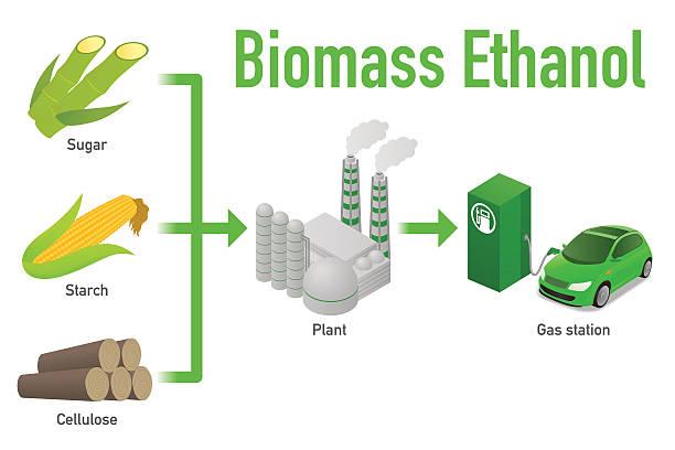 sumber-bahan-bakar-etanol