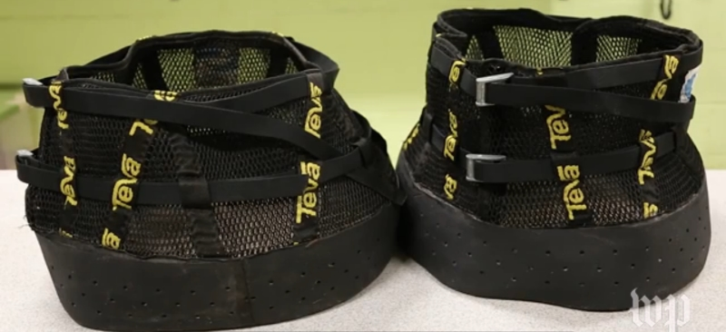 Sapatos Teva