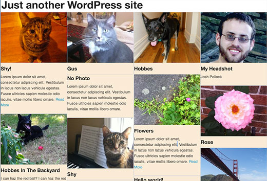 How to Use Masonry to Add Pinterest Style Post Grid in WordPress
