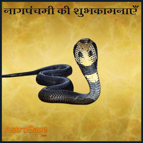 Nag Panchami parv nag devta ko samarpit hai.