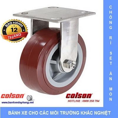 Bánh xe đẩy càng inox 304, bánh xe PU tải từ 270kg đến 405kg/bánh www.banhxeday.xyz