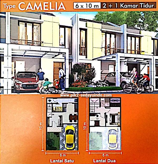 Rumah PIK 2 Dijual Tipe Camelia Cluster Virginia