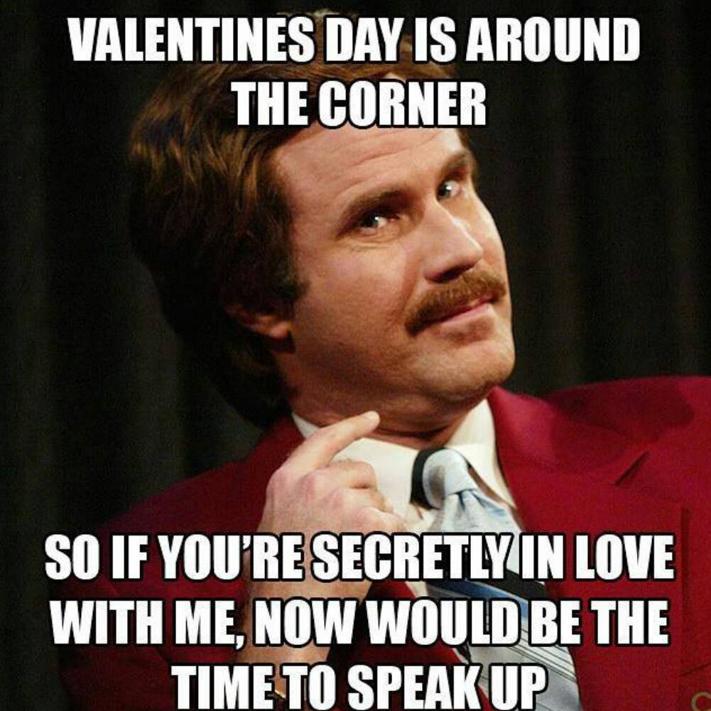 Look - Memes day Valentines pictures video