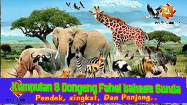 Kumpulan 9 Contoh Cerita Dongeng Fabel Sasatoan Bahasa Sunda