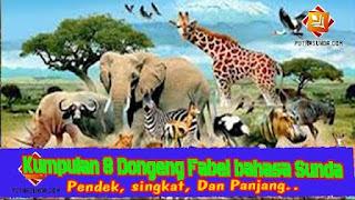 Kumpulan 9 contoh cerita dongeng fabel tentang binatang atau sasatoan bahasa sunda