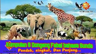 Kumpulan 8 Contoh Cerita Dongeng Fabel (Sasatoan) Bahasa Sunda!