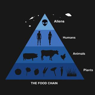 ¿la cadena alimenticia del futuro?.......