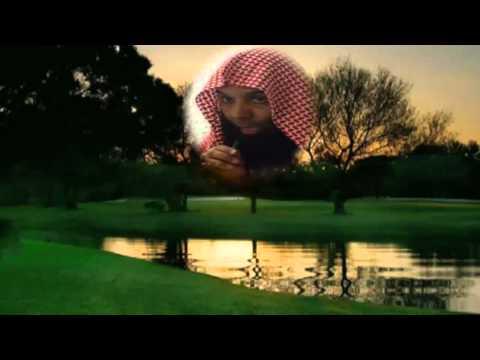 محاضرات خالد الراشد تحميل