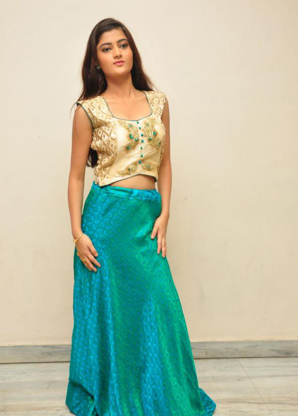 Akshitha in Skirt and Embroidery Crop Top