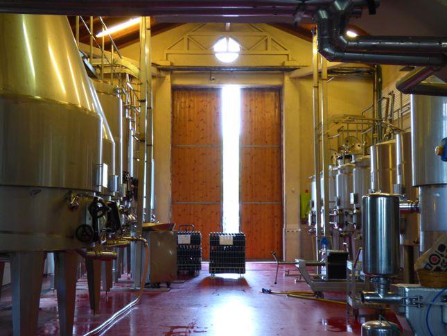 Inside an Israeli winery