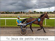 http://www.laurentbessol-photographies.fr/p/jeux-de-petits-chevaux.html