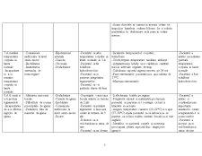 Diabet zaharat Diagnostic Nursing Plan de Îngrijire