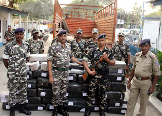Sashastra Seema Bal seized cannabis worth Rs 8 crore