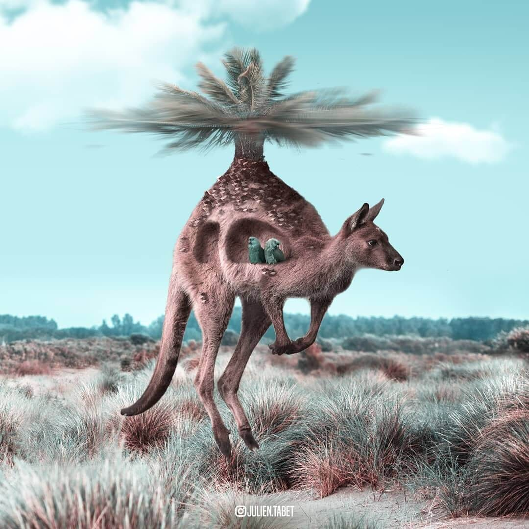 07-Elevation-Julien-Tabet-Surreal-Animal-Photo-Manipulation-www-designstack-co
