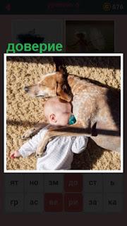 651 слов ребенок доверяет собаке, спят вместе 6 уровень