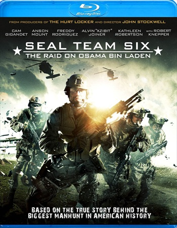 Seal Team Six The Raid On Osama Bin Laden 2012 Dual Audio Hindi Bluray Movie Download