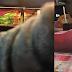 'Lelaki ini konon nak beli, tetapi dia larikan iPhone 7 saya' - Mangsa rugi RM3,699