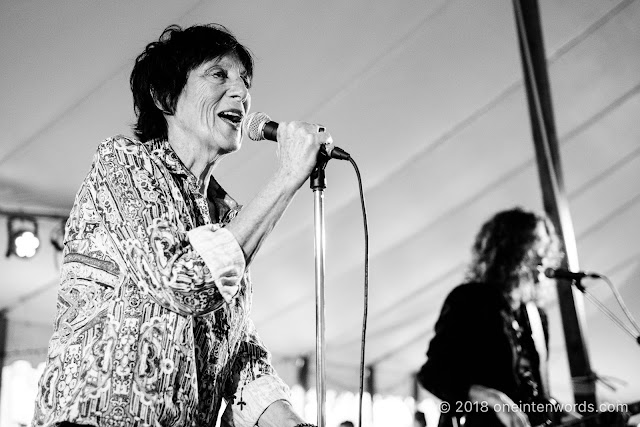 Carole Pope of Rough Trade at Riverfest Elora 2018 at Bissell Park on August 19, 2018 Photo by John Ordean at One In Ten Words oneintenwords.com toronto indie alternative live music blog concert photography pictures photos