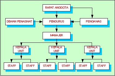 struktur-umum-organisasi-koperasi