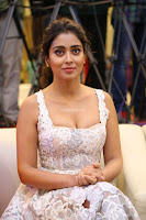 Shriya Sharan in Gorgeous Sleeveless Glittering short dress at Paisa Vasool audio success meet ~  Exclusive Celebrities Galleries 014.JPG