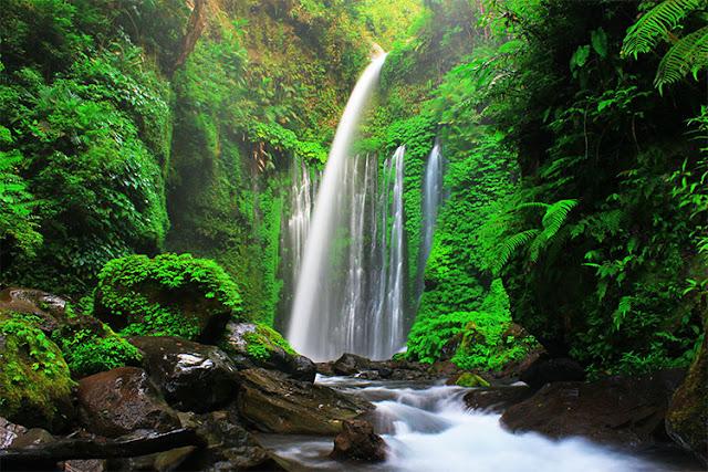 Air Terjun Tiu Kelep (Foto : cahayadalamframe.wordpress.com)
