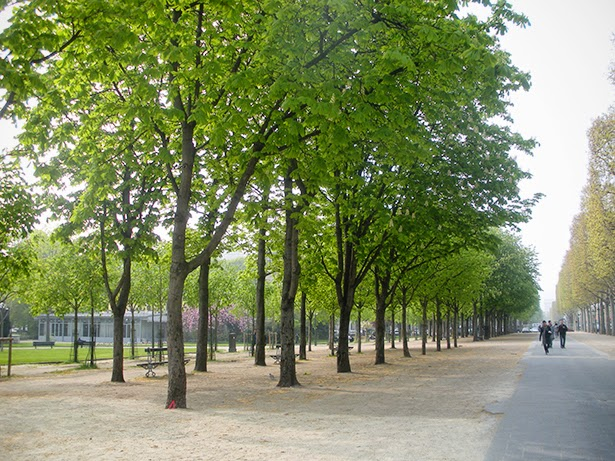 The boulevards in Paris