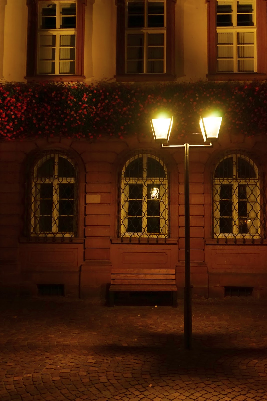 Le Chameau Bleu - Blog Voyage Heildeberg Allemagne - Rue d'Heildeberg by Night - Allemagne