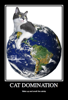 Cat World Domination Day Foto Frenzy