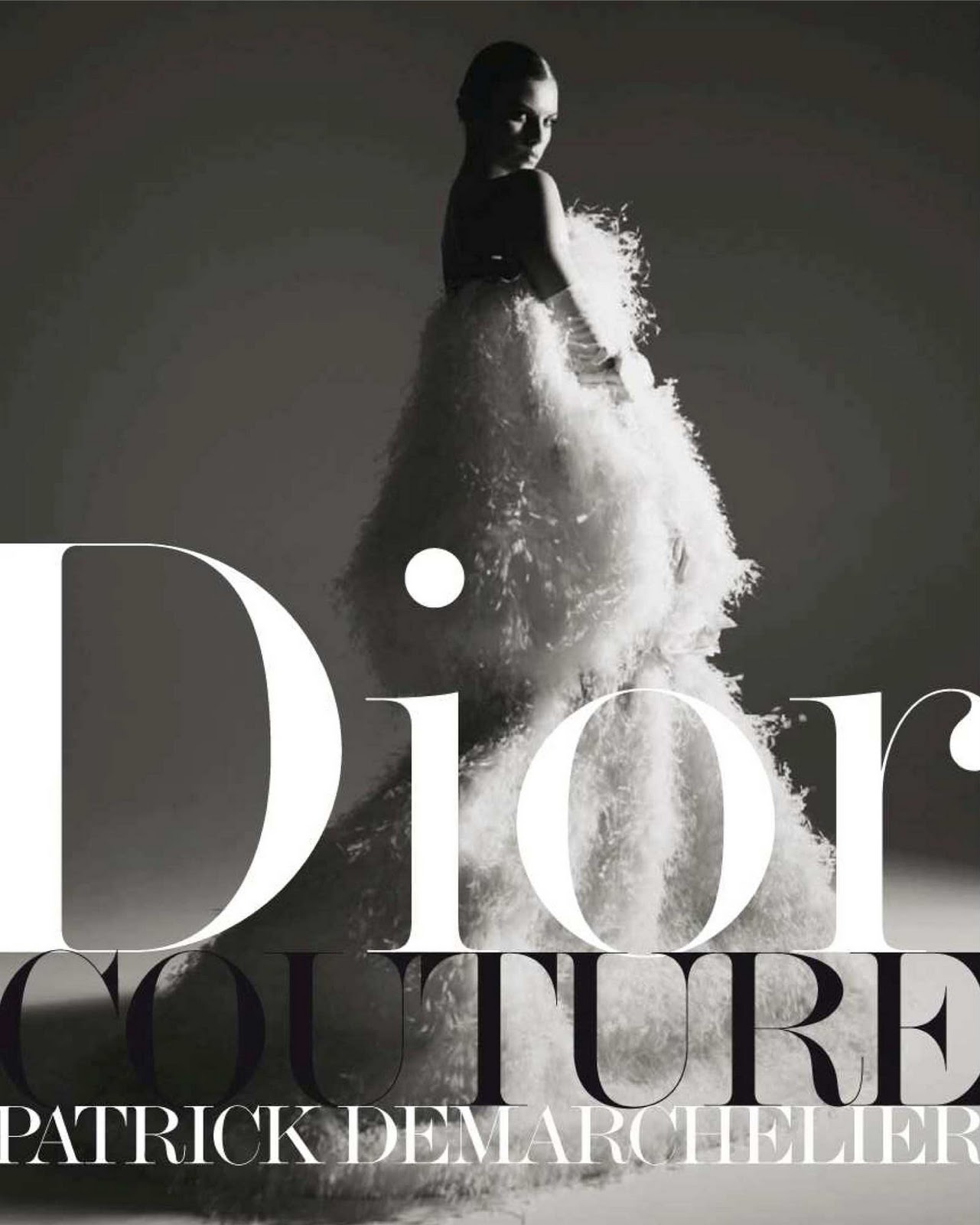 Christian Dior Art Decoratif