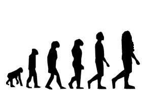 進化?(素材)